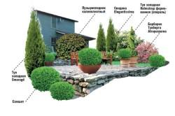 Возможная схема озеленения открытой веранды
